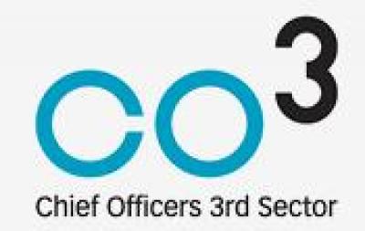 CO3 Logo